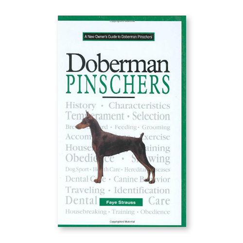 A New Owner's Guide to Doberman Pinschers