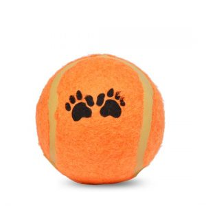 Orange Tennis Ball