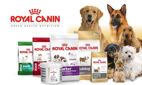 Slide_002_Royal_Canin
