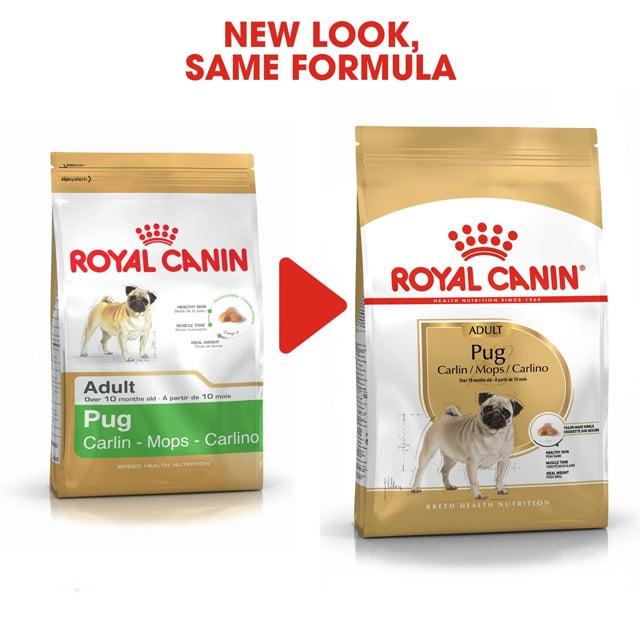 Royal Canin Pug Adult_1