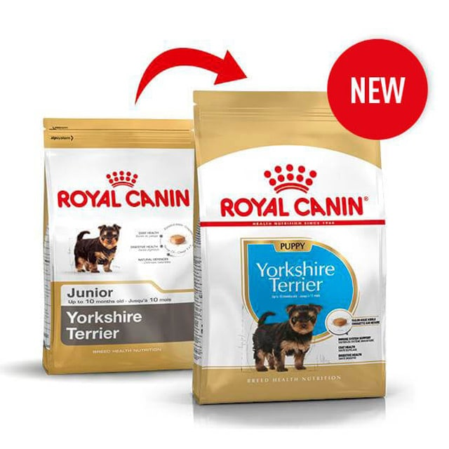 Royal Canin Yorkshire Terrier_1