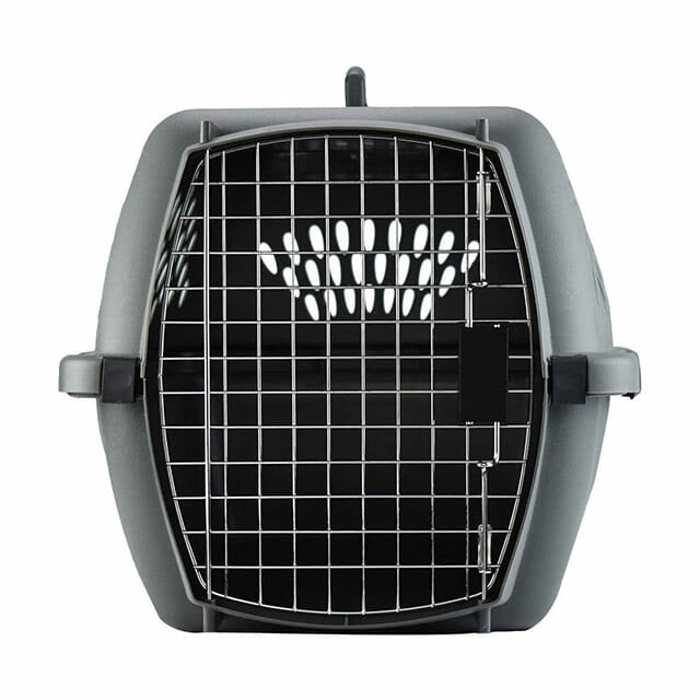Aspenpet Pet Porter Heavy Duty Pet Carrier