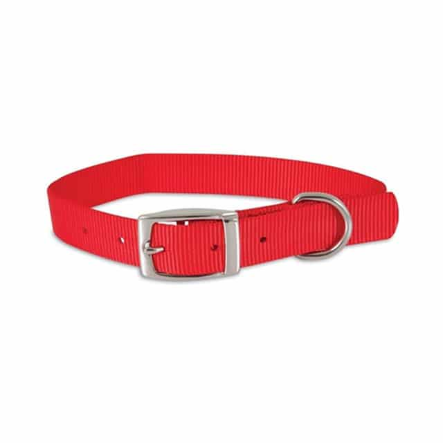 Petmate Collar