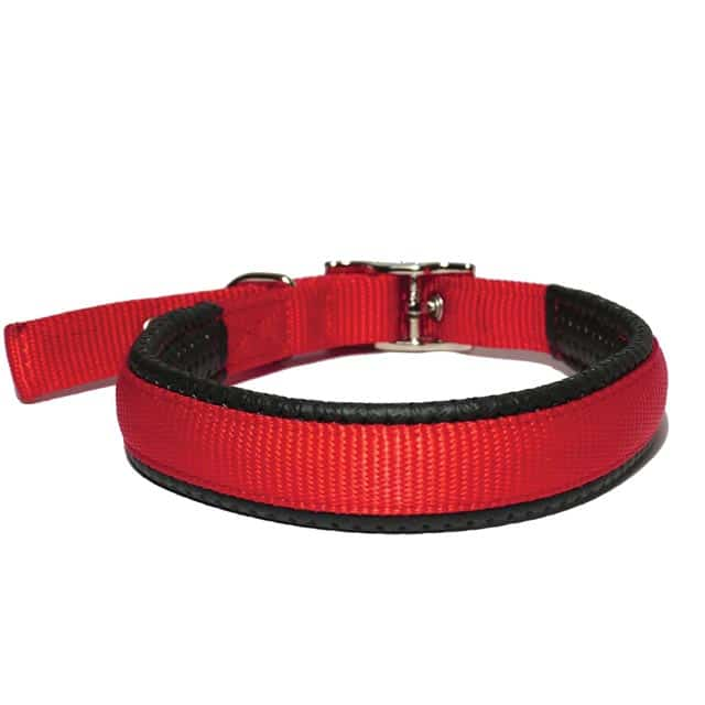 Rosewood Classic Soft Protection Collar