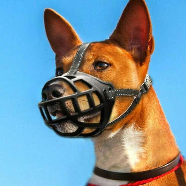 Rosewood Soft Basket Muzzle Size Pup-2