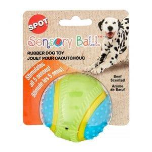 Spot Sensory Ball Dog Toy