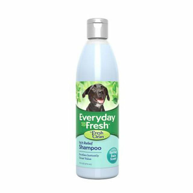 Everyday Fresh™ by Fresh 'n Clean® - Itch Relief Shampoo - Spring Rain Scent