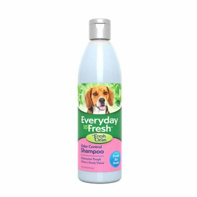 Everyday Fresh™ by Fresh 'n Clean® - Odor Control Shampoo - Fresh Air Scent
