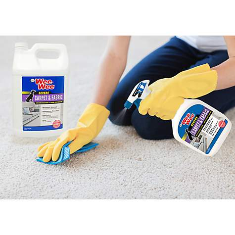 Four Paws Wee-Wee® Carpet and Fabric Stain and Odor Destroyer in use