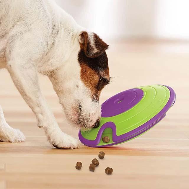 Outward Hound (Nina Ottosson) Treat Maze – Interactive Dog Toy (Level 2)_1