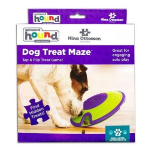 Outward Hound (Nina Ottosson) Treat Maze - Interactive Dog Toy (Level 2)