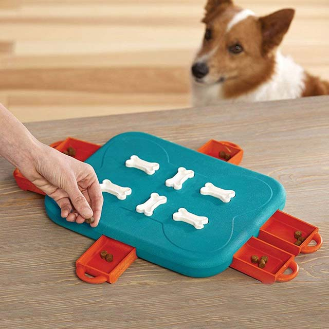 Outward Hound Nina Ottosson Dog Casino Advanced Puzzle Toy_5