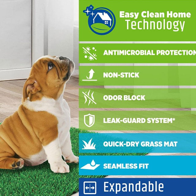 Four Paws Wee-Wee Premium Patch Indoor and Outdoor Pet Potty_4